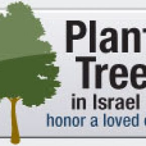 Memorial banner 3