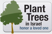 Plant a Tree to Honor a Loved One